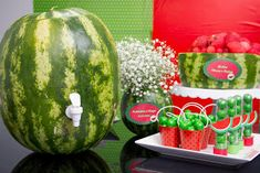 Nathalisse (quase) tudo o que faz e pensa uma Nathália!: Bodas de flores e frutas - 4 anos de casamento! Maria Clara, Tutti Frutti, Watermelon, Picnic, Lily, Fruit, Birthday, Party, Watermelon Decor