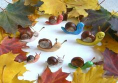 Autumn Activities For Kids, Activities To Do, Crafts For Kids, Snail Craft, Fall Projects, Creative Kids, Fall Crafts, Paper Flowers, Xmas