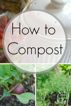 Save resources and make your own rich, lovely garden soil with this guide on how to compost. It's not as hard as you might think!