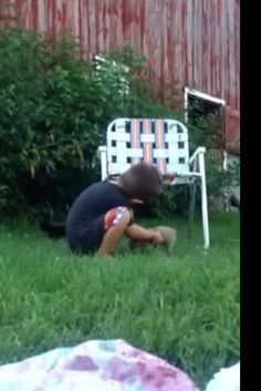 Boy Tries Desperately To Round Up Runaway Kittens: 'Guys, We Got A Situation!'