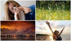 12 verdades e mentiras sobre as alergias | SAPO Lifestyle