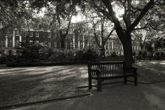 Tavistock Square by Rachels@Photos