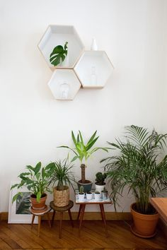 Etagères hexagonales Bloomingville, Cloche en verre Fleux, Bougie Dyptique, Vases Tiger et Bloomingville, Carafe ancienne chinée  -  http://insidecloset.com/fanny-paris-2eme-22/