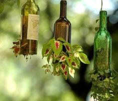 Top 10 Ways To Reuse Glass Bottles