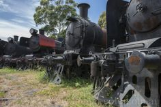 Proud Iron Horses of a bygone era suffocatingly awaiting their new breathes of life. Courtesy of Back In Time, Train Station, Trains, Restoration, Past, Iron, Horses, History, Life