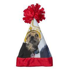 Funny Dog Costume Christmas Santa Hat