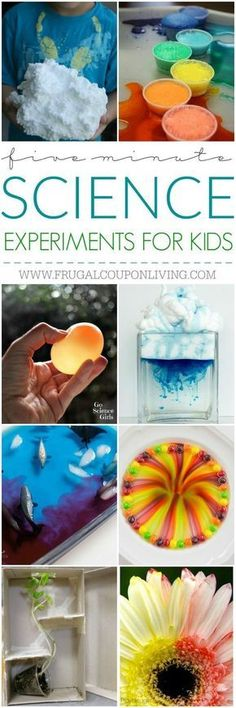 5 Minute Science Experiments for Kids and Busy Moms on Frugal Coupon Living. Geometric Bubbles, Glow in the Dark Volcanoes, Replicate Ocean Currents and more! Homeschooling Science Ideas.