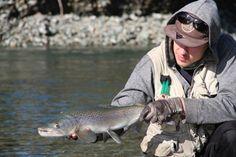 Fly Fishing New Zealand in November