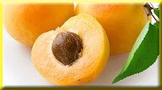 gambar buah aprikot