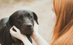 Conversations with your dog are one-sided, but you don't need a verbal response to know talking to your furry best friend is a good idea. No matter how silly you think you sound, striking up a conversation while you're out …