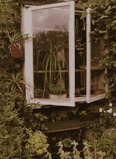 Down to earth kitchen bay window My secret garden bay city