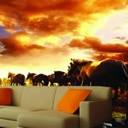 Awesome wall decals