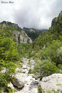 #parconaturale #prealpigiulie #friuliveneziagiulia #montagne #mountains #natura #nature #italy #canon #fotografia #photography #photoshop #focus #alberi #tree #flora #pietre #stones