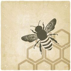 Pattern Beehive Stock Vector Illustration And Royalty Free Pattern ...