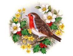 птичка - Схемы вышивки - Софья1989 - Авторы - Портал «Вышивка крестом»