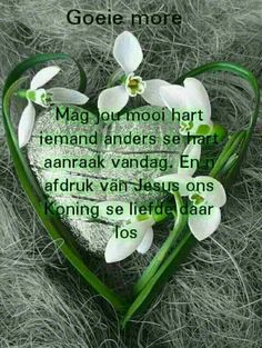 Good Morning Messages, Good Morning Wishes, Lekker Dag, Afrikaanse Quotes, Goeie More, Good Night Quotes, Special Quotes, Morning Greeting, Strong Quotes