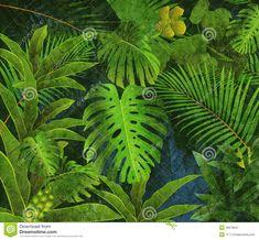 Fondo Tropical De La Pintura Al óleo De La Selva Tropical - Descarga De Over 36 Millones de fotos de alta calidad e imágenes Vectores% ee%. Inscríbete GRATIS hoy. Imagen: 49578647