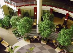 Modern space with trees
