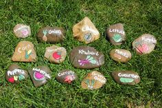 Medium Set of 6 custom 2-3 Garden Stone Markers - Perfect way to mark your fruits, vegetables, and herbs