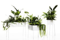 Green Pedestals by Front for Offecct Oasis-Collection. www.offecct.se