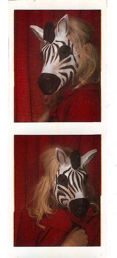 zebra photobooth