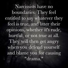 I like how you blamed me for your own drama. You have experience by now in blaming others for the situations that you caused and people you have hurt.