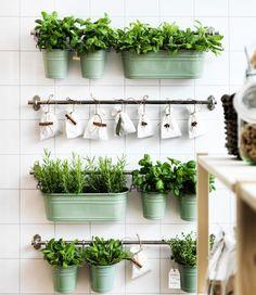 Range-épices et égouttoirs à couverts servant de pots pour les fines herbes et accrochés à des barres-supports