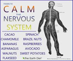 Foods To Calm The Nervous System. found on naturallynourishing.com