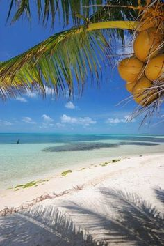 The Cayman Islands, Caribbean