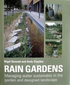 A book review of Rain Gardens: Managing Water Sustainability in the Garden and Designed Landscape by Nigel Dunnett and Andy Clayden.