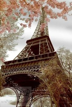 Feels Like Home to me: I love Paris in the Spring