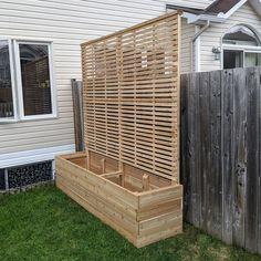 Backyard Privacy, Backyard Patio, Backyard Landscaping, Building A Raised Garden, Raised Garden Beds, Raised Beds, Patio Design, Garden Design, Garden Trellis