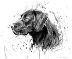 Black Labrador - artist James Bartholomew
