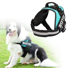 Service Dog Vest,ZOTO Adjustable Dog Harness Vest with 4 Removable Velcro Patches(In Training ZOTO Logo),Soft Padded Non Pull Dog Reflective Vest,Dog Vest Large Size for Walking/Training * You can find out more details at the link of the image. (This is an affiliate link and I receive a commission for the sales)