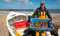 Cromer Crab fisherman returns with his catch! Norfolk Coast, Cromer, Slow Food, Crabs, Food And Drink, Pots, Coastal, Delicate, Heaven