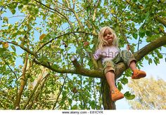 Little blond child girl climbing on a apple tree in the garden - Stock Image