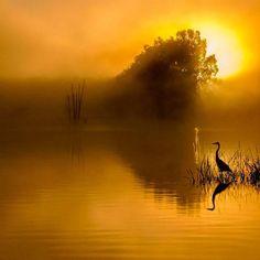Sunrise ....by João P Santos
