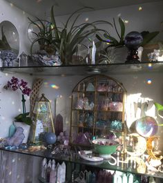 Rainbow crystal altar on glass shelves // Its rainbow season again ☀️ so magical ✨ gorgeous ✨ Crystal Altar, Crystal Decor, Crystal Aesthetic, Decoration Inspiration, Decor Ideas, Witch Aesthetic, Aesthetic Bedroom, My New Room, Witchcraft