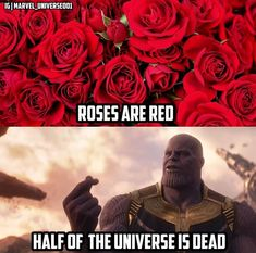 I just relized that that means that half the roses are dead Marvel Jokes, Avengers Memes, Marvel Funny, Marvel Dc Comics, Marvel Avengers, Marvel Cinematic Universe, Marvel Universe, Depressing, Avengers Infinity War