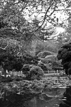 Green-Pear-Diaries-Fotografías-San-Francisco-Japanese-Tea-Garden_05