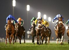 Safety Check had to dig deep to defend his title in Meydan's Zabeel Mile, but he accomplished that while recording his fifth straight win when running at Meydan. Tried initially at the 2014 carnival on …
