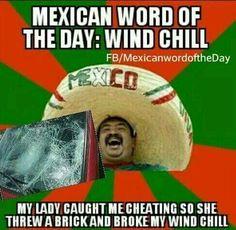 Windshield, lol