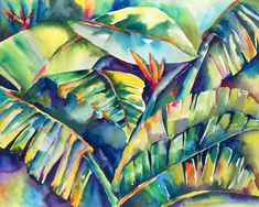 Tropical Daystar watercolor painting, watercolor painting artist,Nadine Ramels