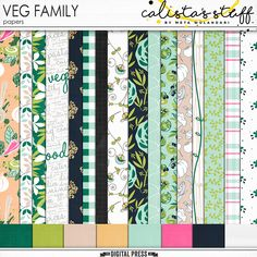 Veg Family Papers