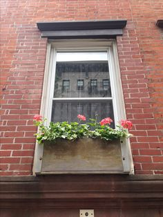 I love bricks...and flowers The Village NYC 2016