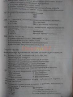 ГДЗ 21 - Биология 9 класс рабочая тетрадь Пасечник