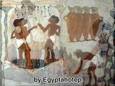 Feeling Ancient Egypt VII,. Beautiful Paintings & Statuettes showing many daily scenes of farming,& Agriculture : wheat planting and harvest ,grape harvest , making bread beer wine etc, and the work with the animals in the farm. Also Their Tools