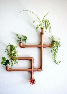 DIY Copper PVC Wall Planter Hi guys! I love finding delightful and unexpected way of displaying indoor plants in my home. This easy DIY wall planter is not only functional but it makes for a great conversation piece, and has the… Diy Wall Planter, Diy Planters, Garden Planters, Planter Ideas, Indoor Wall Planters, Wall Garden Indoor, Copper Planters, Balcony Garden, Planter Boxes