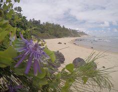 Praia Do Giz- Pipa