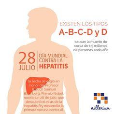 Día Mundial contra la Hepatitis: Prevenir la hepatitis actuar ya Las hepatitis virales un grupo de enfermedades infecciosas que comprende las hepatitis A B C D y E afectan a cientos de millones de personas del mundo entero pues provocan hepatopatías agudas y crónicas y causan la muerte de cerca de 15 millones de personas cada año (sobre todo las hepatitis B y C). Esas infecciones se pueden prevenir pero la mayoría de las personas no sabe cómo.